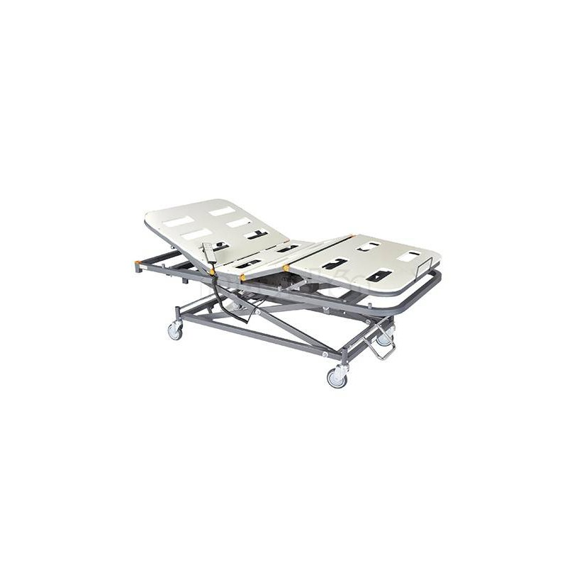 PPC NEWLINE Electric Geriatric Bed + Electric Lifting Carriage