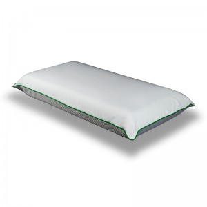 Nord Swiss VISCO SOY pillow