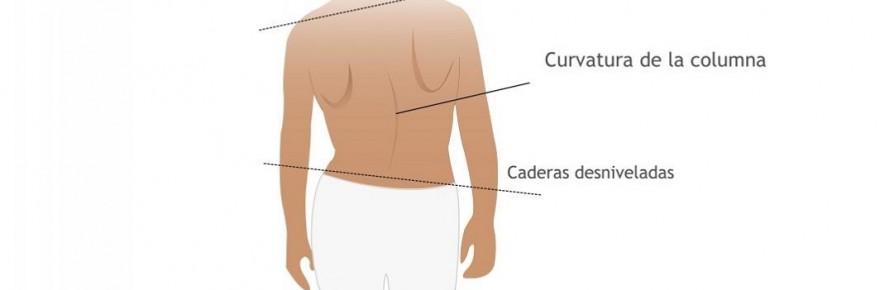 El corsé ortopédico lumbar con las placas